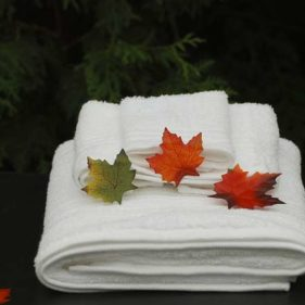 leaves on towels